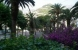 Jardin: HOTEL EUROPA Zone: Cote Amalfitaine Italie