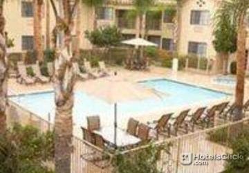 Photos Hotel Hilton Garden Inn Fort Myers Airport Fgcu Fort Myers Fl United States Photos