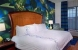 Camera Suite: Hotel INDIGO JACKSONVILLE DEERWOOD PARK Zona: Jacksonville (Fl) Stati Uniti