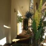 Hotel HARMONYINN - KINGSCOURT: