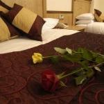 Hotel BUSH HOTEL: