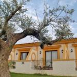 Hotel HACIENDA REAL LOS OLIVOS: