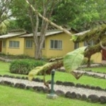 Hotel LA FORESTA NATURE RESORT: